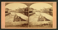 Levee, St. Louis, Missouri, from Robert N. Dennis collection of stereoscopic views.png