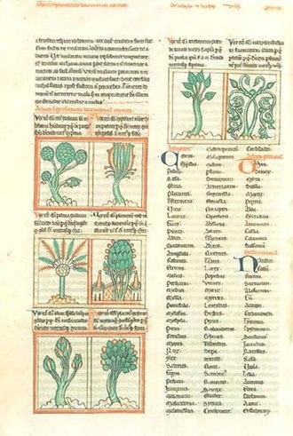 Liber Floridus - Image: Liber Floridus page scan C, ca. 1460