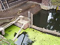 Lieberose-Doberburg Wassermühle-Doberburg Einlauf Juli-2011 SL276418.JPG