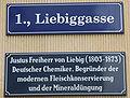 Liebiggasse 01.jpg