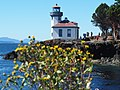 Light House Standing strong the stroms, winds and the ocean currents - 99 Years.jpg