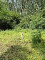 Ligny-lès-Aire - Fosse n° 2 - 2 bis des mines de Ligny-lès-Aire, puits n° 2 (C).JPG
