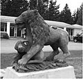 LionByJohnWilson.jpg