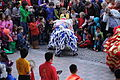 Lion Dance, Chinese New Year 2013 at the Crow Collection 15.jpg