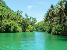 The Loboc River in Bohol , Philippines