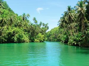 Loboc River - Image: Loboc river