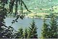 Loch Carron through the Trees - geograph.org.uk - 949710.jpg