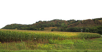 English: Loess Hills, east of Mondamin, Iowa