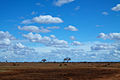 Long horizons in Tsavo East (5232128207).jpg