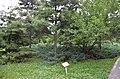 Lush greenery around the Terracotta warriors pit (35648438506).jpg
