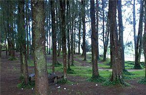 Macarao National Park - Image: Macarao