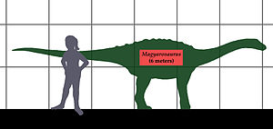 1932 in paleontology - Magyarosaurus size comparison