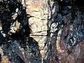Maine Coast Rocks (4164075357).jpg