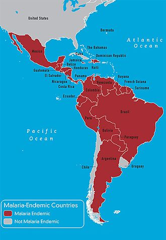 Race and health - Malaria-endemic countries western hemisphere