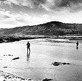 Malibu Creek Estuary - Stelhead Anglers c. 1940 (27807006858).jpg