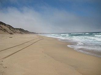 Marina State Beach - Marina State Beach