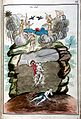 "Marinier, ""Miracle naturel, ou le grand ..."" Wellcome L0026959.jpg"