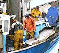 Marins-pêcheurs travaillant sur leur bateau au port (8).JPG