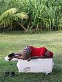 Marshall Islands PICT1466 (4776620387).jpg