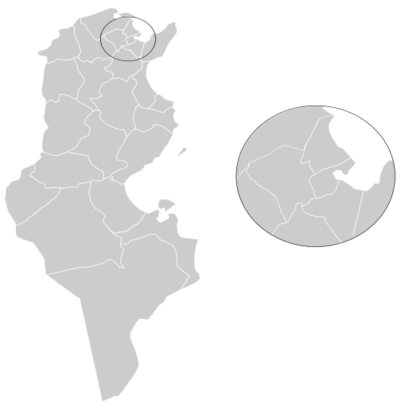 Medium map tunisia.png