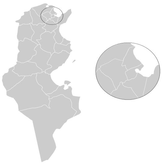 Medium map tunisia