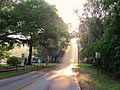 Micanopy in the morning - panoramio.jpg