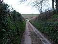 Mid Devon , Country Road - geograph.org.uk - 1800048.jpg