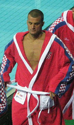 Miho Bošković 2010.jpg