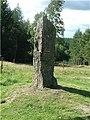 Millennium Stone on Corsedardar Hill - geograph.org.uk - 254629.jpg