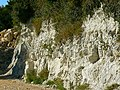 Miniature chalk quarry (a closer look), Wessex Ridgeway, near Stert - geograph.org.uk - 524017.jpg