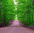 Mississauga Road, Caledon, Ontario.jpg