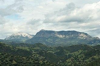 Monte Albo - Monte Albo see from Su Tempiesu (Orune)