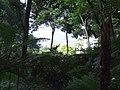 Monte Palace Tropical Garden DSCF0128 (4642477751).jpg