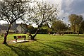 Monthou-sur-Cher (Loir-et-Cher) (31320235325).jpg