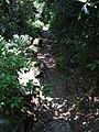 Mount Athos- ancient plastered path 2.jpg