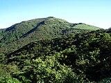 Mount Daruma Summer 20100718.jpg