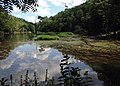 Musconectcong River near Hughesville Dam removal site (29377264114).jpg