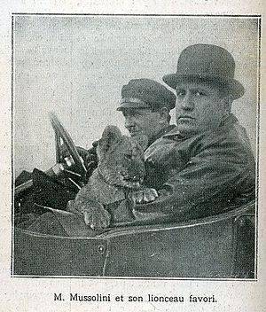 Propaganda of Fascist Italy - Mussolini with his pet lion cub Ras, 1924