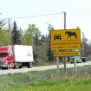 New Brunswick Route 16 - Moose warning sign