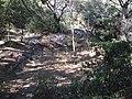 Nages Oppidum Roque de Viou 3992.JPG