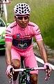 Nairo Quintana en etapa 17 del Giro de Italia 2014.jpg