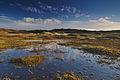 Nationaal Park Zuid-Kennemerland (20).jpg