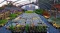Native Plant Nursery at the Asilomar Conference Grounds.jpg