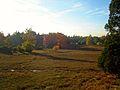 Natuurgebied Lemelerveld.JPG