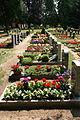 Neschwitz - Hauptstraße - Friedhof 04 ies.jpg