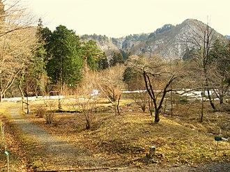 Nikko Botanical Garden - Image: Nikko Botanical Garden, Japan 2