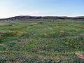 Norse settlement, L'Anse aux Meadows, NL.JPG