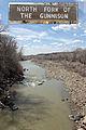 North Fork Gunnison River.JPG
