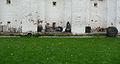 Novodevchy tombs.JPG