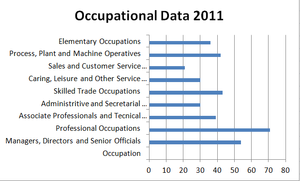 Belton, Leicestershire - A graph produced on Excel on the occupation of the Economically active people of belton